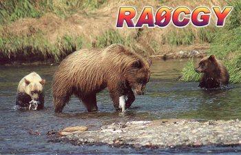 RA0CGY032.jpg